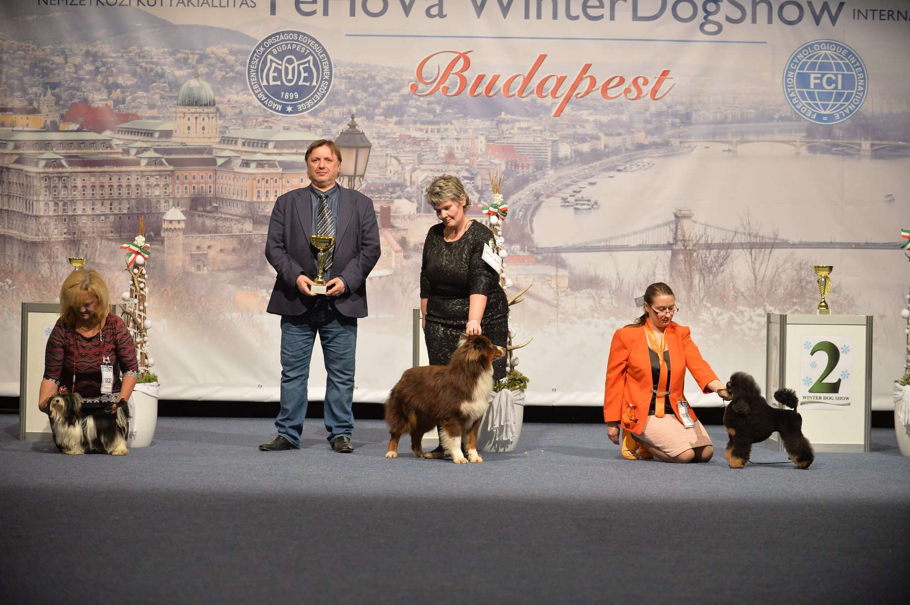 Winter Dog Show 2019